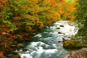 river_00019